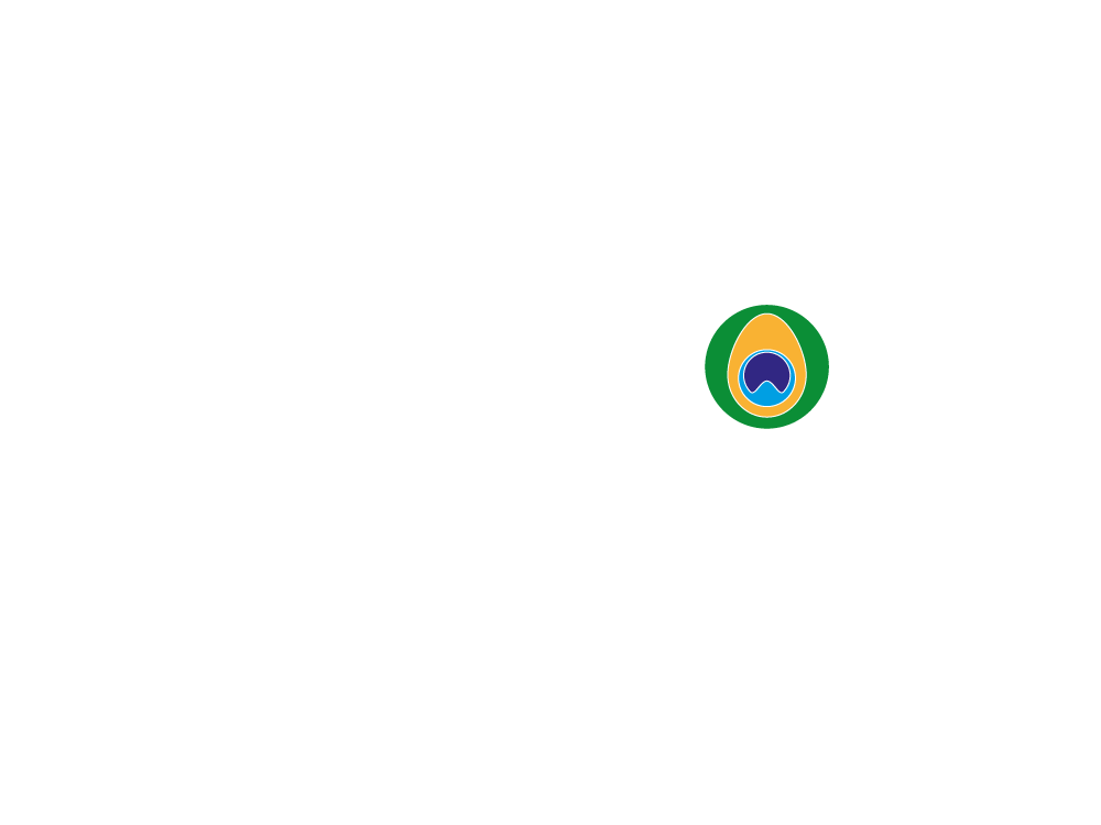 Paó Digital Stucio